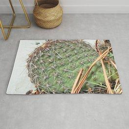 Watercolor Cactus, Prickly Pear 03, Boulder, Colorado Rug