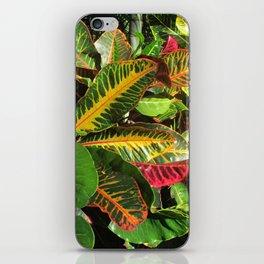 Beautiful Croton iPhone Skin