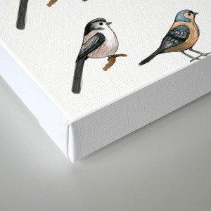 Tiny Birds Canvas Print