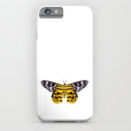 butterfly moth Dysphania subrepleta isolated iPhone Case