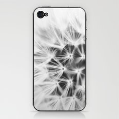 dandy iPhone & iPod Skin
