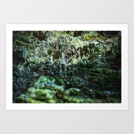 Quarry hill Art Print