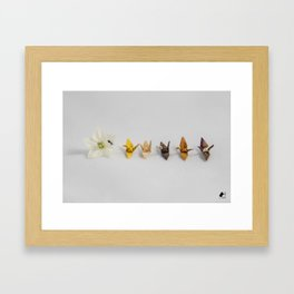 Rose Pedal Origami Hanakami Zen Cranes Framed Art Print
