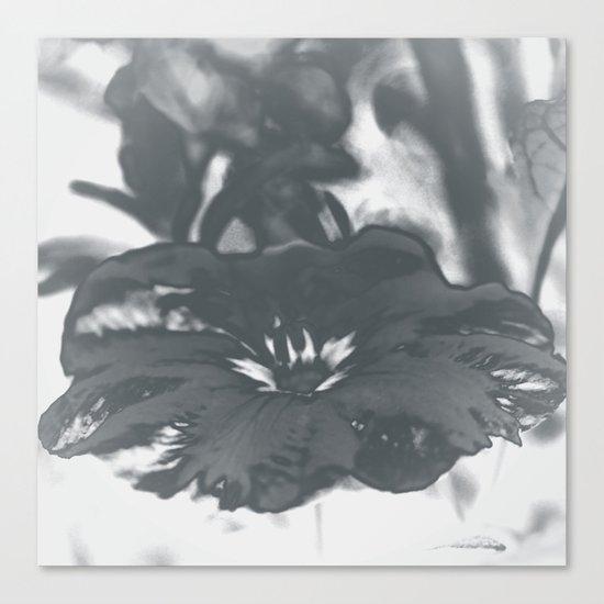 Bloom in Platinum Tone Canvas Print