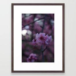 In Silence Framed Art Print