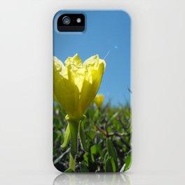 Glimpse iPhone Case