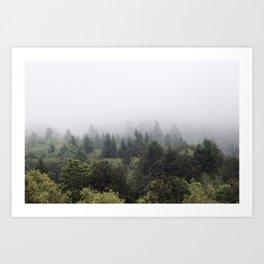 Northwest Art Print