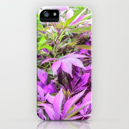 Purple Series 1 iPhone Case