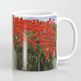 Royal Poinciana Tree Coffee Mug