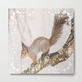 Little squirrel jumping on the branch #decor #society6 #buyart Metal Print
