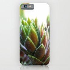 Tropical Colors iPhone 6s Slim Case