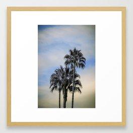 Palm Trees in infa red Framed Art Print