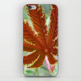 Red Leaf iPhone Skin