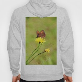 Arran Brown butterfly and yellow flower Hoody
