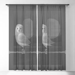 Barn Owl Full Moon Sheer Curtain