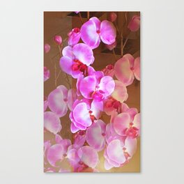Pink Orchid Visual Delight Canvas Print