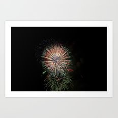 Fireworks make you wanna... (5) Art Print