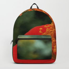 Bee on Mexican Sunflower Backpack