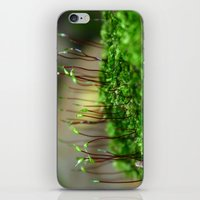moss iPhone & iPod Skins featuring Moss by 8daysOfTreasures