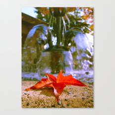 Red Autumn leaf Canvas Print