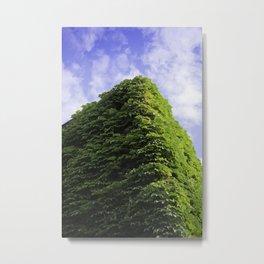 Amazing Green Vines Blanket a Building in Port Hope Metal Print