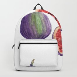 Figs Backpack
