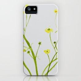 Icelandic Buttercup iPhone Case
