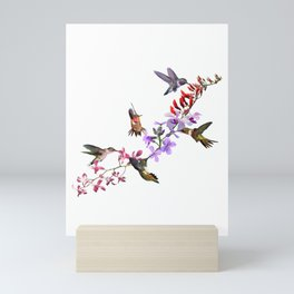 Hummingbirds Feeding Mini Art Print
