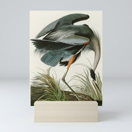 Great blue Heron - John James Audubon's Birds of America Print Mini Art Print