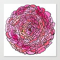 A many (many, many) petaled flower Canvas Print
