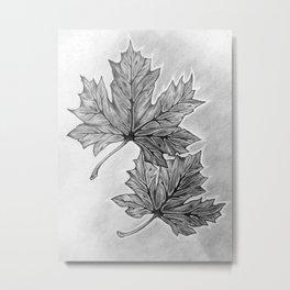 Shadow Maple Metal Print