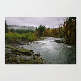 The Wilson River In The Tillamook National Forest Canvas Print