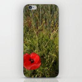 Unripe Wheat Field and Poppy iPhone Skin