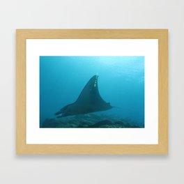 Manta ray touching rays of light Framed Art Print
