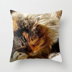 Zzzzz 2 Throw Pillow