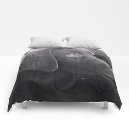 Labrador Puppy Portrait Comforters