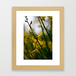 Come away with me my love Framed Art Print