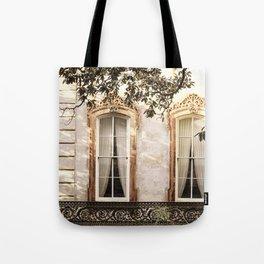 Savannah Window Decadence Tote Bag