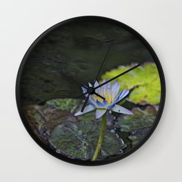 The water lily Wall Clock