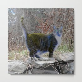 Cat of a Different Color Metal Print