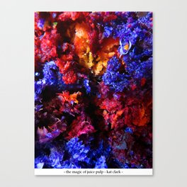 the magic of juice pulp Canvas Print