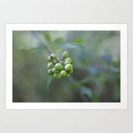 Green Burgeon Art Print