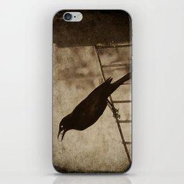Blackbird 2 iPhone Skin