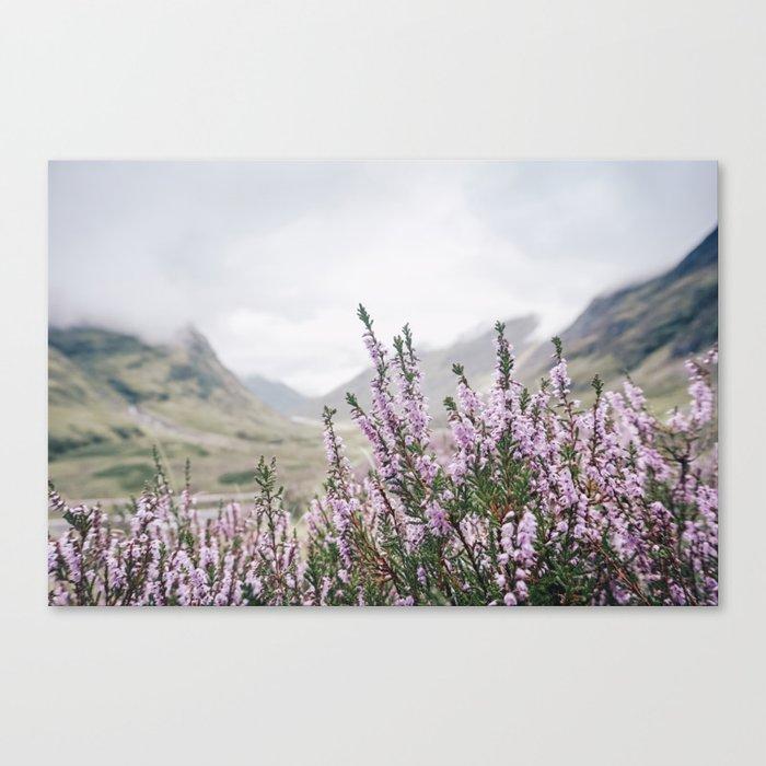 Heather in Glencoe Canvas Print