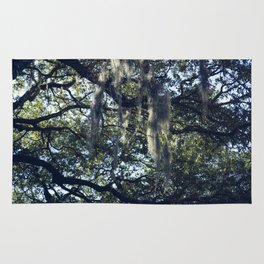 sunlight and moss in the trees Rug