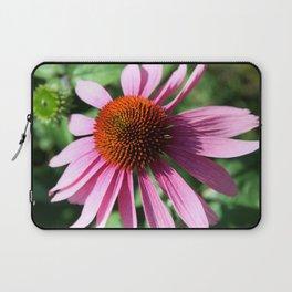 Purple Conflower Laptop Sleeve