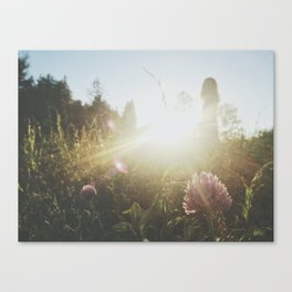 fields of whimsy Canvas Print