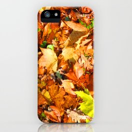 Leaves & colours iPhone Case