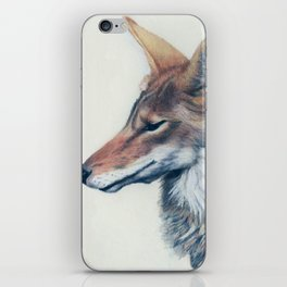 Coyote Anubis iPhone Skin