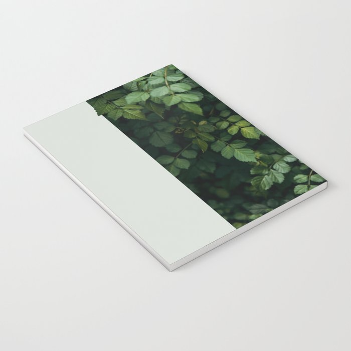 Growth Notebook